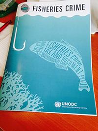 unodc-focus-sheet