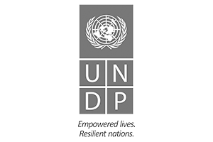 UNDP-logo-grey