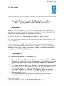 CPH Declaration Webinar final report